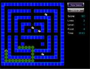 Snake labyrinthe